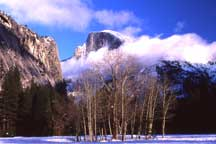 Winter Meadow, Yosemite Valley